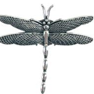 Dragonfly Magnetic Brooch
