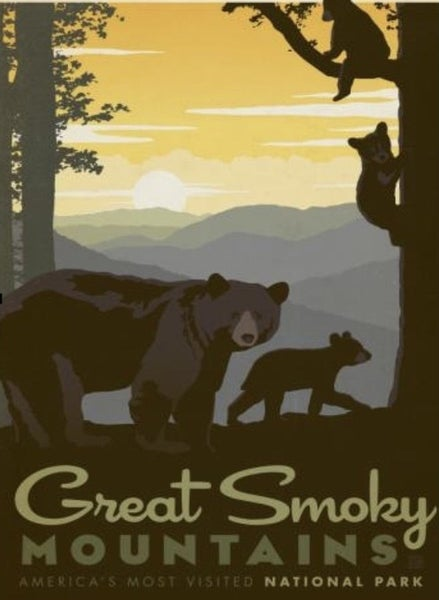 Great Smoky Mountains 500 Pc Puzzle
