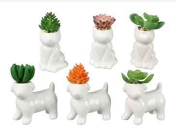 Ceramic Cat/Dog w Succulent