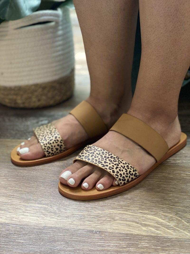 The Wild Sandal