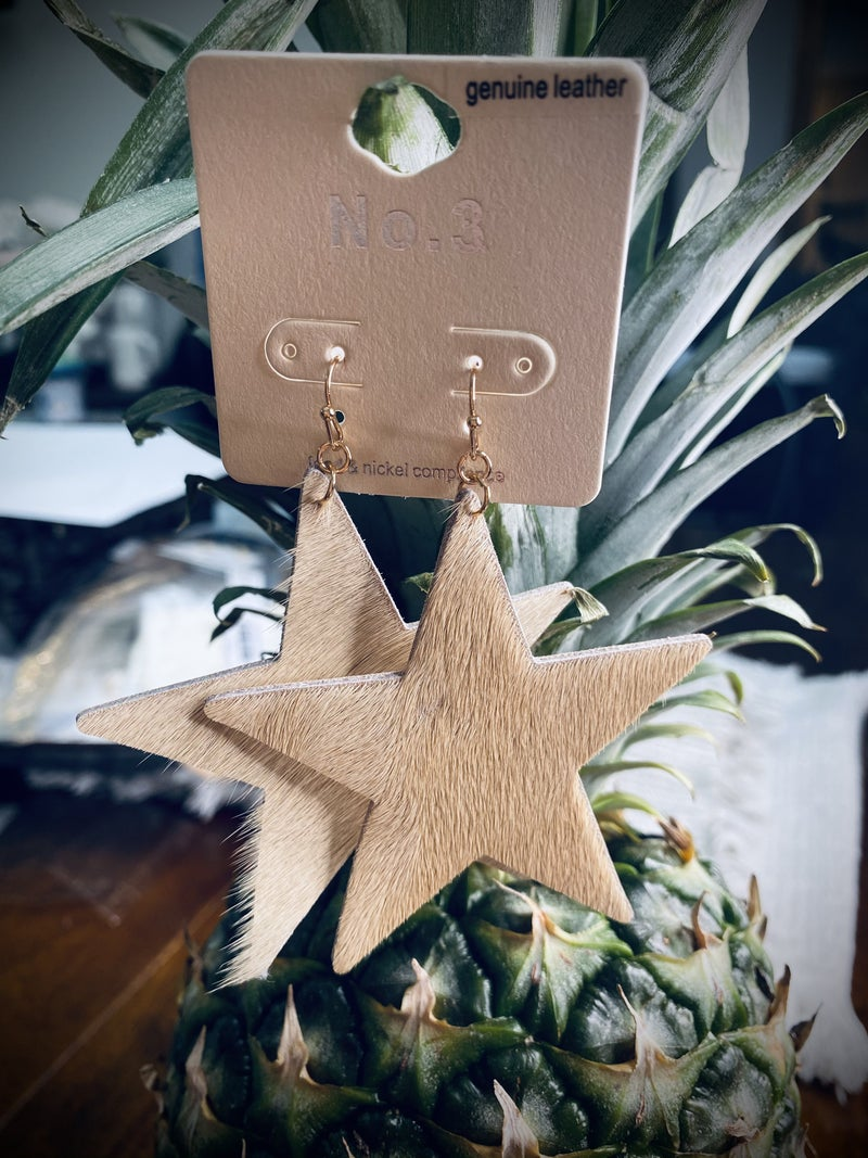 Large Star Earrings
