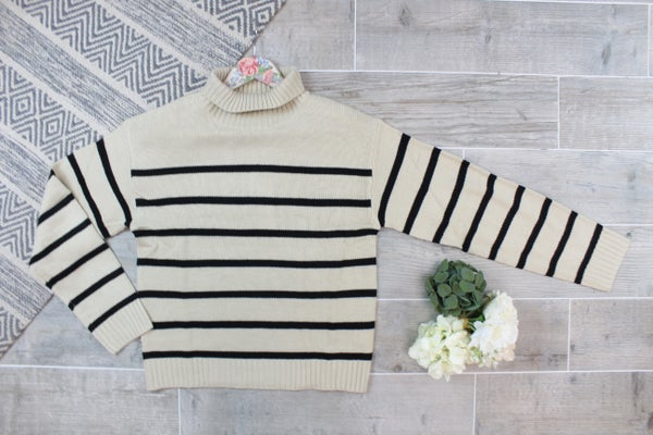 Your Basic Striped Turtleneck Sweater