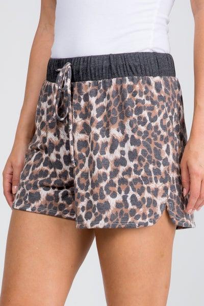 Leopard Love Shorts