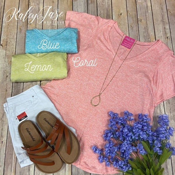 Two Toned Basic Vneck Top