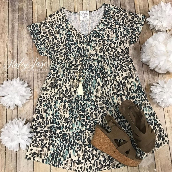 Teal Oatmeal V Leopard Dress