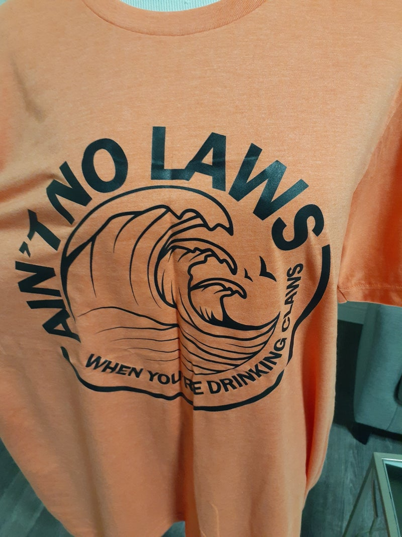 AIN'T NO LAWS