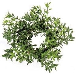 New England Boxwood Candle Ring, 7""