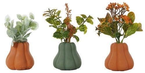 """4"""" Small Resin Pumpkin Succulent- Assorted"""