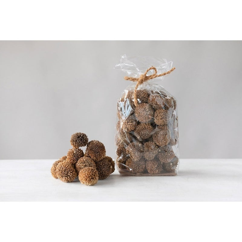 """2"""" Round Dried Natural Lion's Ear"""