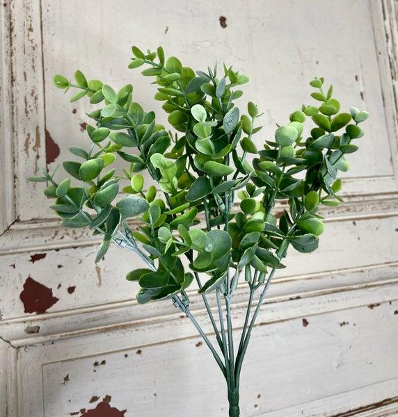 "13.5 "" Eucalyptus Bush"