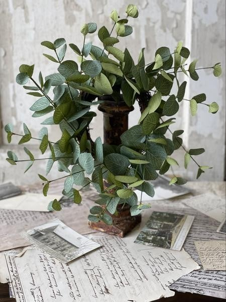 "Nova Eucalyptus Wreath   15"""