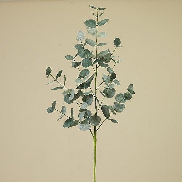 """35"""" Eucalyptus Leaf Pick"""
