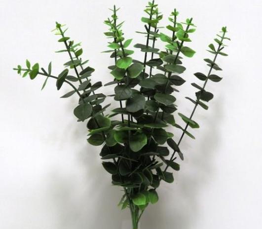 "16"" Eucalyptus Stem- Bundle Of 6"