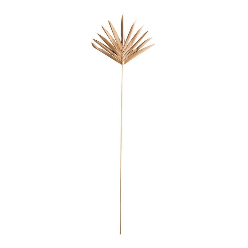 "36""H Handmade Dried Buri Palm Lady Finger Pick"