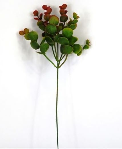Eucalyptus Bush - set of 4
