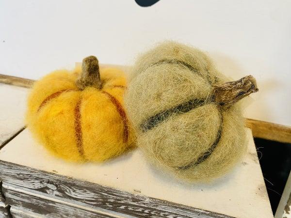 Small Fiber Pumpkin