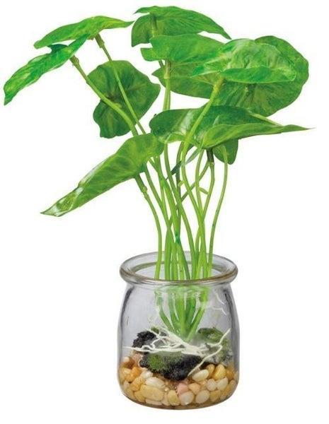 Jar - Arrow Leaf