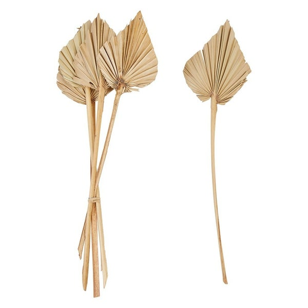 """21""""H Dried Natural Palm Bunch"""