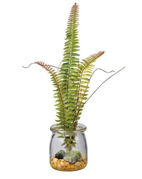 Jar - Garden Fern