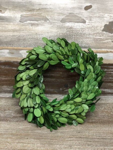 "8"" Boxwood Wreath"