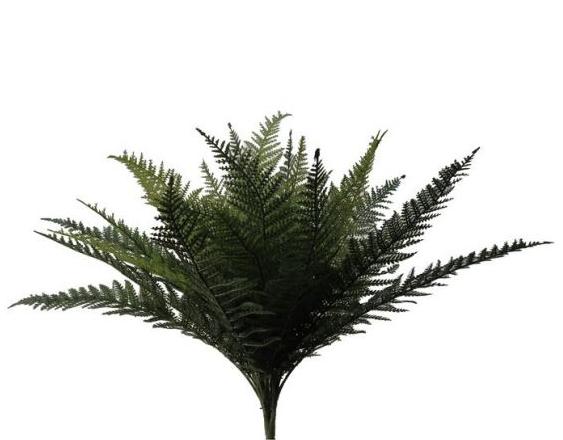 Plastic Ruffle Fern - Green