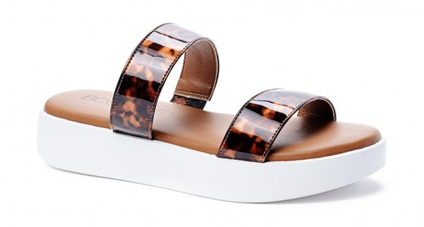 Tortoise Paddle Board Shoes
