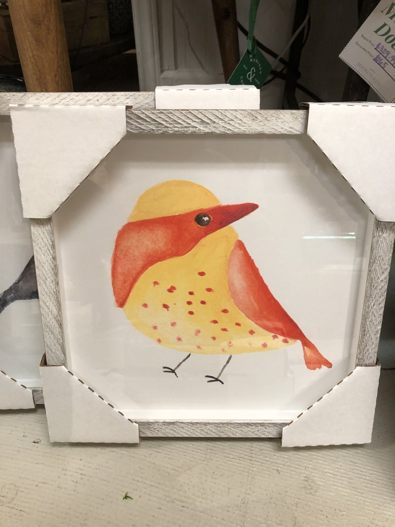 Chubby Birds Framed wall art