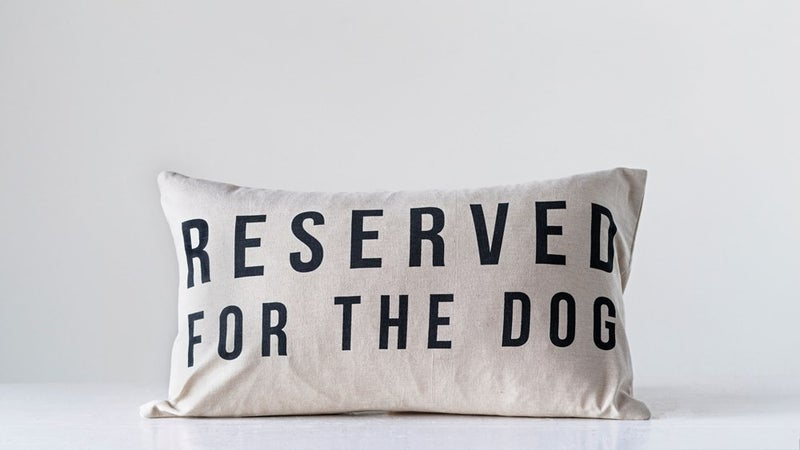 Reserved for the Dog Pillow 24x14