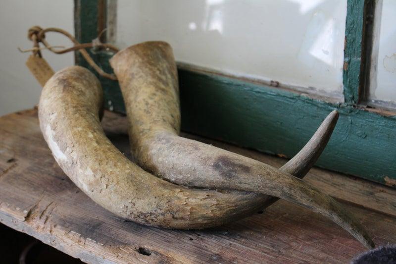 Set of Horns