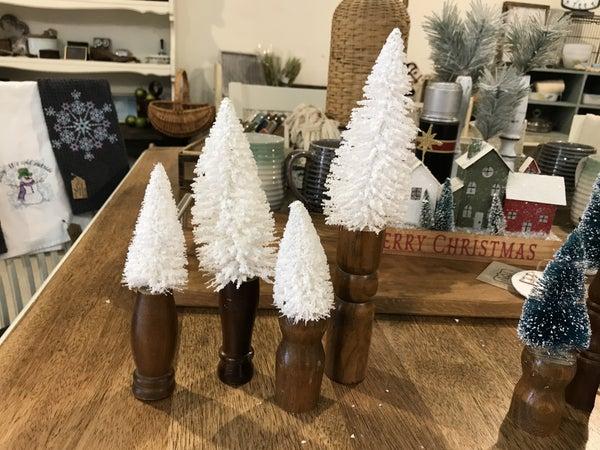 White bottle brush trees