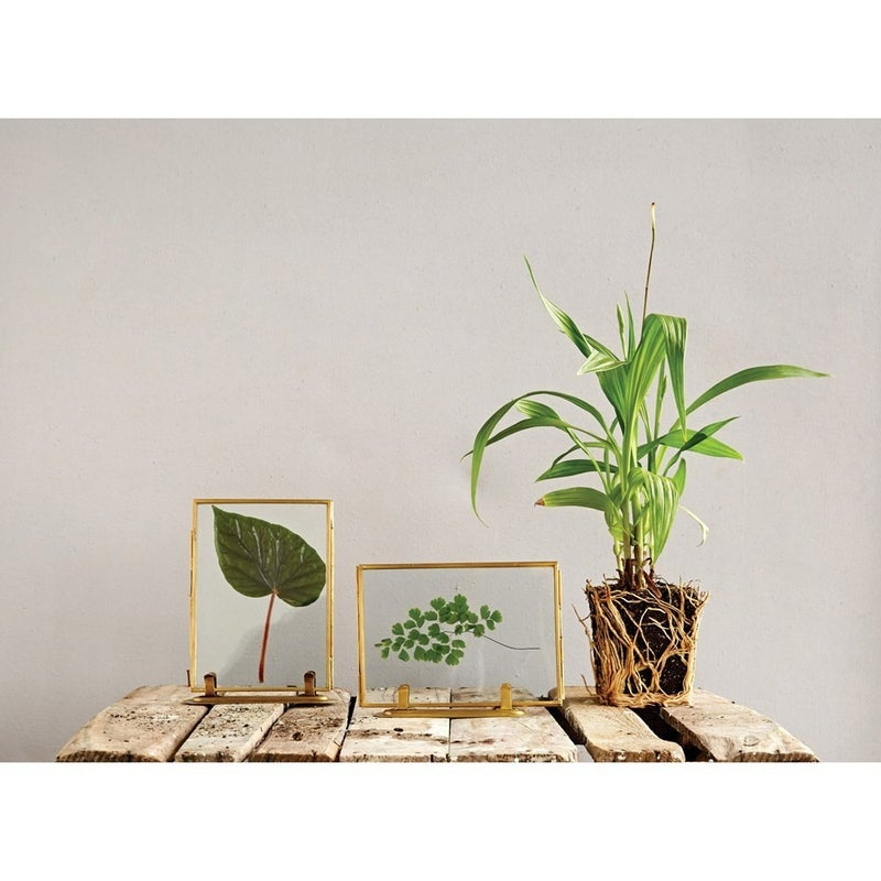Brass and Glass Standing Photo Frame