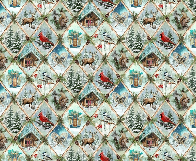 QMN 2021 Digital Nature Scenes Sky 1/2 Yard Increment