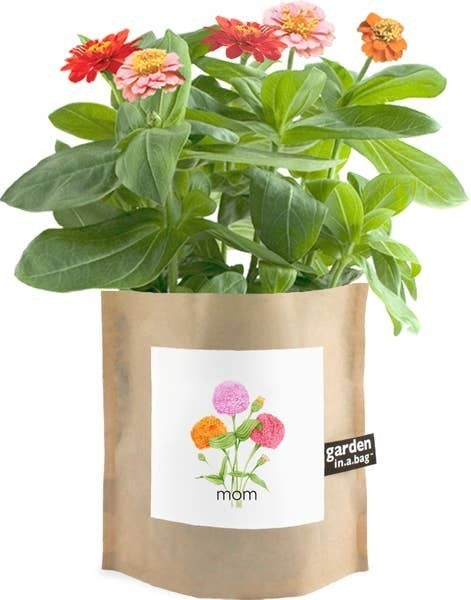 Garden in a Bag Mom