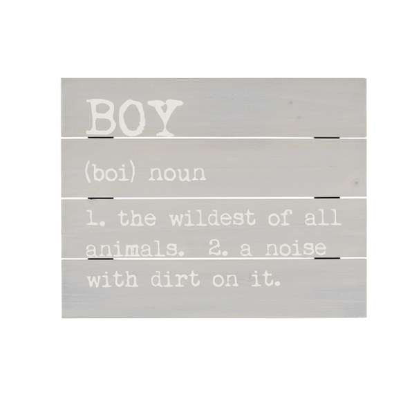 Boy Definition Pallet Sign