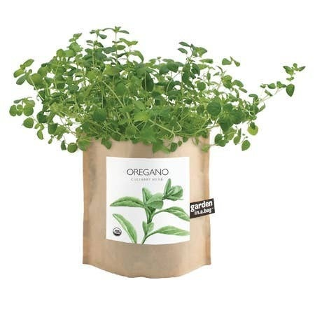 Garden in a Bag Oregano
