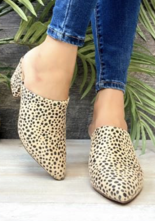 Envious Speckled Mule