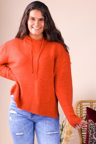 Soaring Higher Sweater