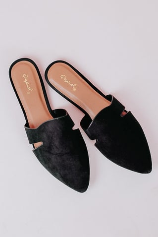 Spin Me 'Round Mules