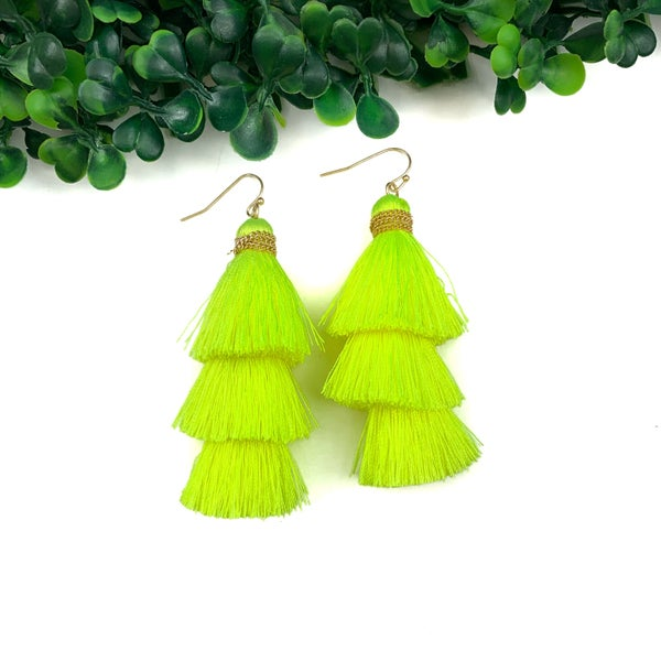Stacked And Tassel Earring*