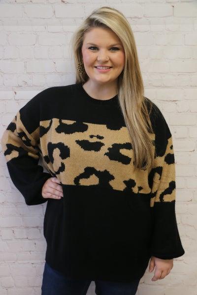 Stuck In A Dream Leopard Colorblock Sweater in Black - Sizes 12-20