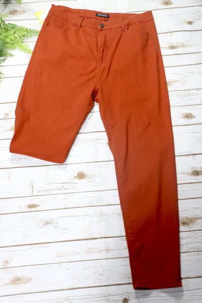 Rust Skinny Jeans In 3X