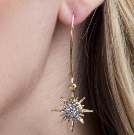 Crystal Glam Earrings