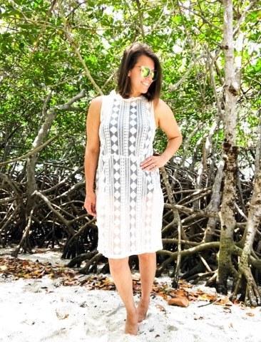 Frill Collar Lace Dress