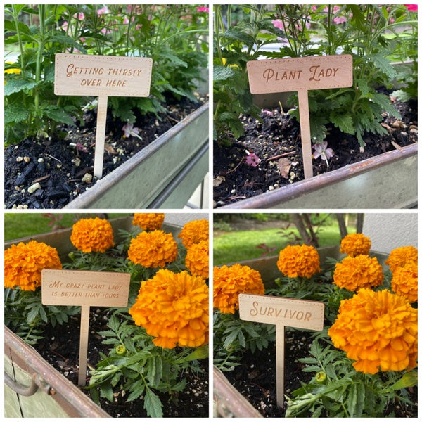 The Garden Markers