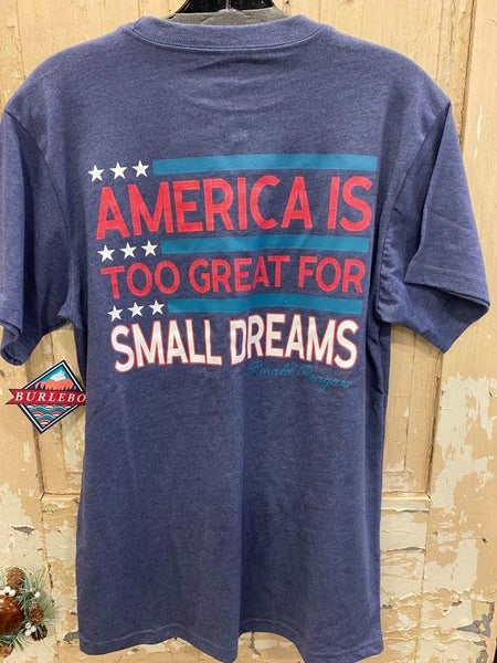 America Is Great Unisex Graphic Tee