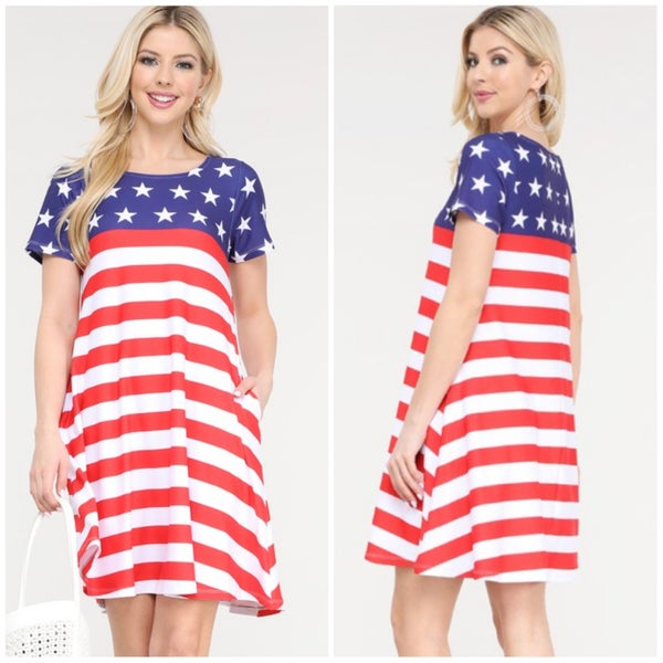 FINALSALE Red, White, & Blue Stars & Stripes Pocket Dress