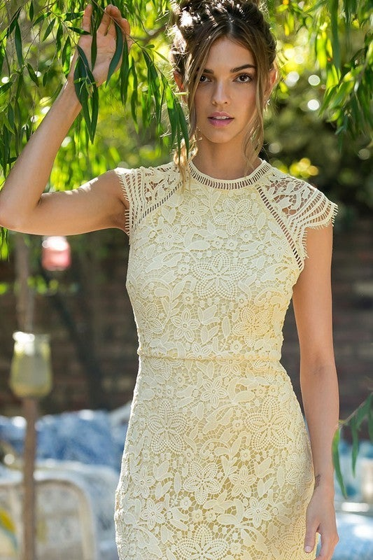 Lace Crochet Mini Raglan Dress with Zipper Back
