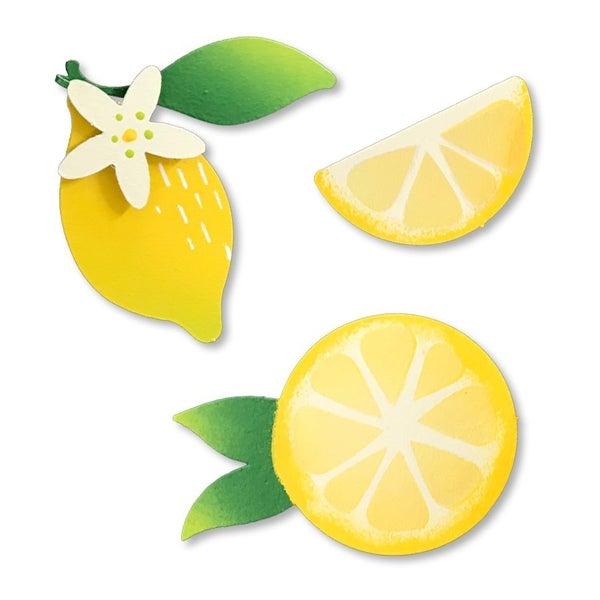 Roeda Lemon Magnets