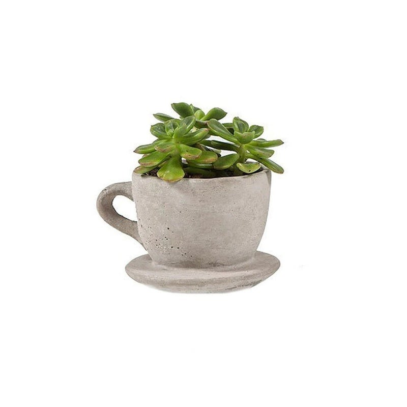 Small Tea Cup Concrete Planter