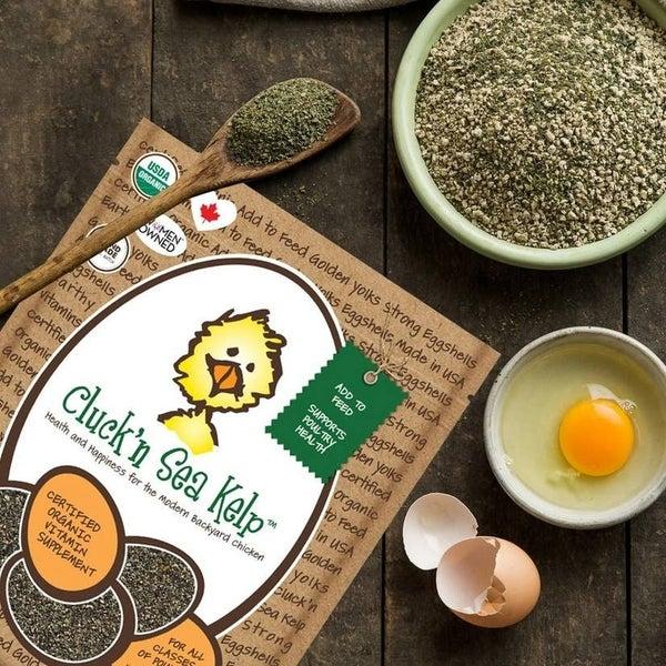 Cluck'n Sea Kelp chicken supplement
